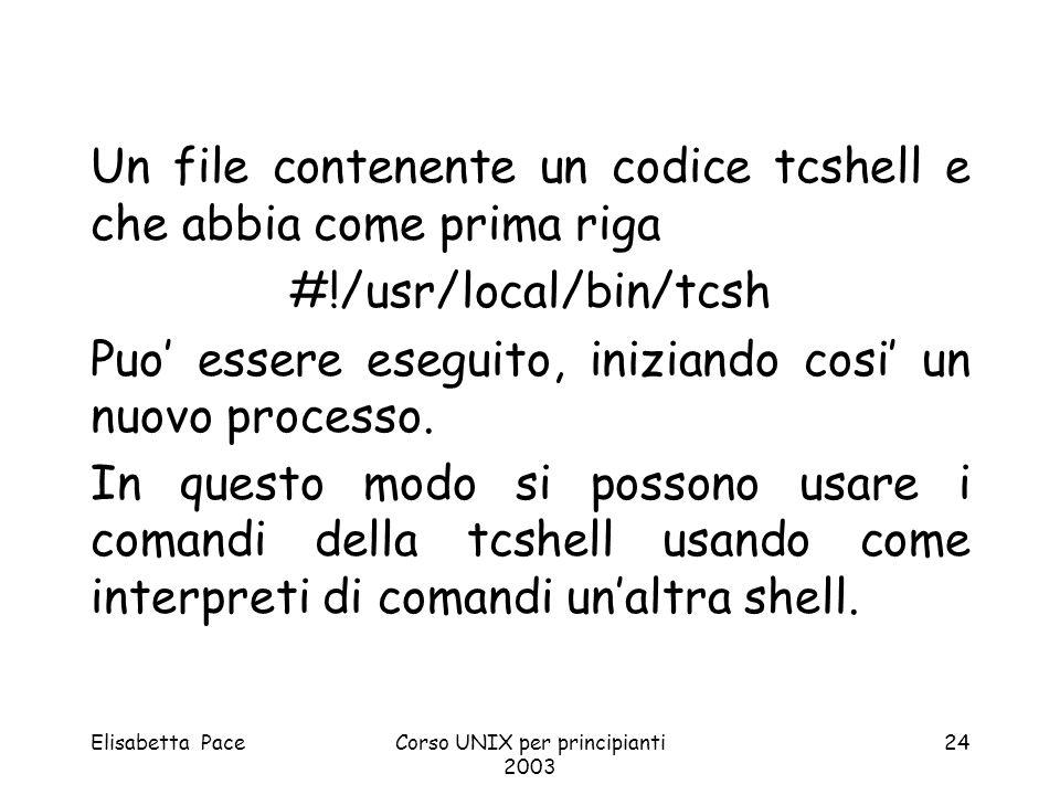 Elisabetta PaceCorso UNIX per principianti 2003 24 Un file contenente un codice tcshell e che abbia come prima riga #!/usr/local/bin/tcsh Puo essere e