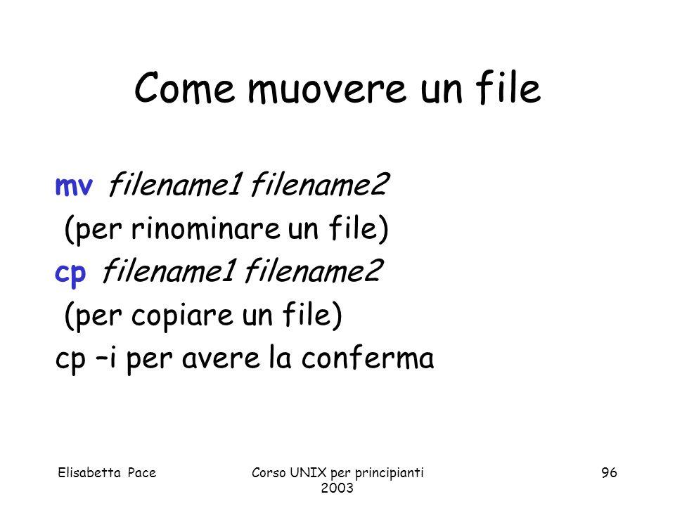 Elisabetta PaceCorso UNIX per principianti 2003 96 Come muovere un file mv filename1 filename2 (per rinominare un file) cp filename1 filename2 (per co