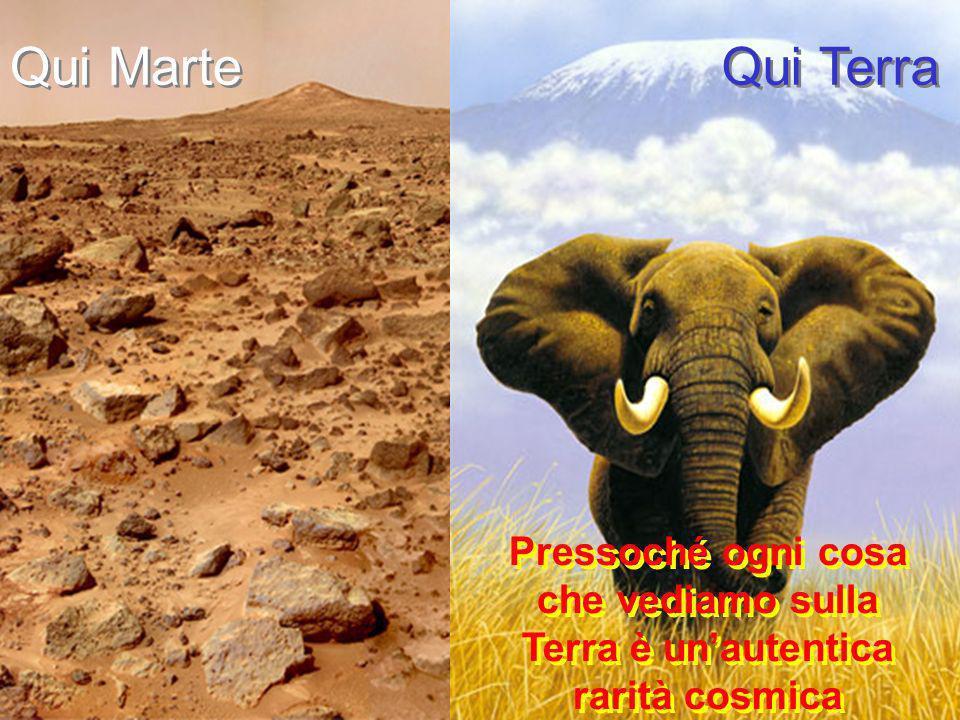 Qui Marte Qui Terra Pressoché ogni cosa che vediamo sulla Terra è unautentica rarità cosmica