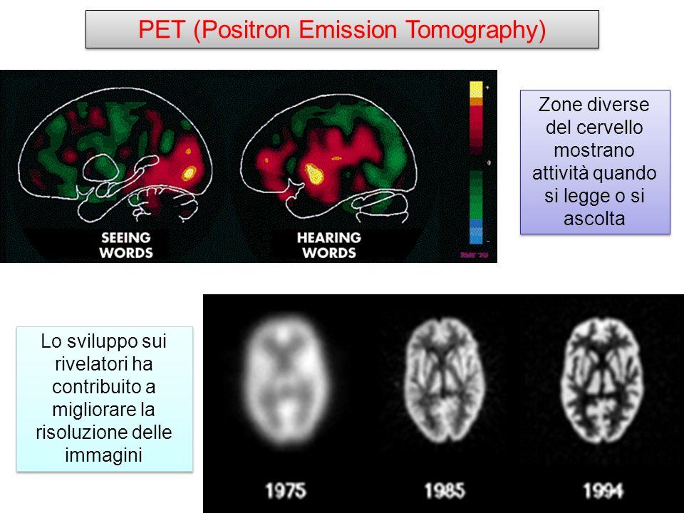 Lo sviluppo sui rivelatori ha contribuito a migliorare la risoluzione delle immagini Zone diverse del cervello mostrano attività quando si legge o si
