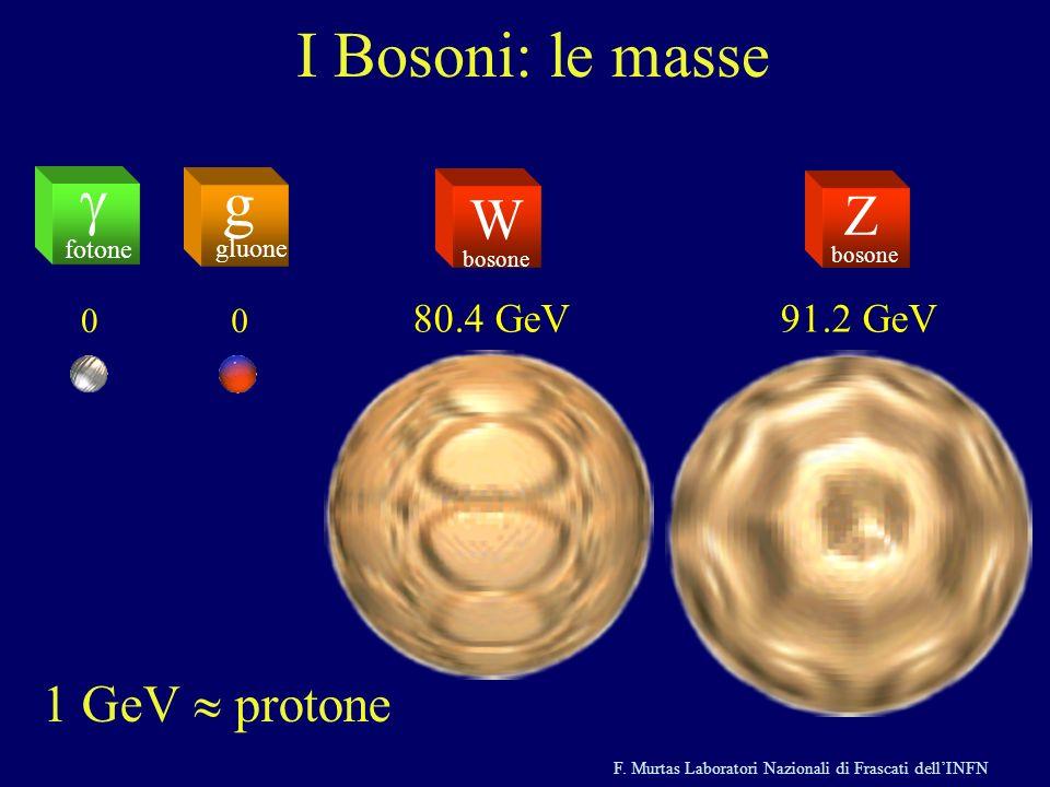 F. Murtas Laboratori Nazionali di Frascati dellINFN I Bosoni: le masse g gluone fotone Z bosone W 00 80.4 GeV91.2 GeV 1 GeV protone