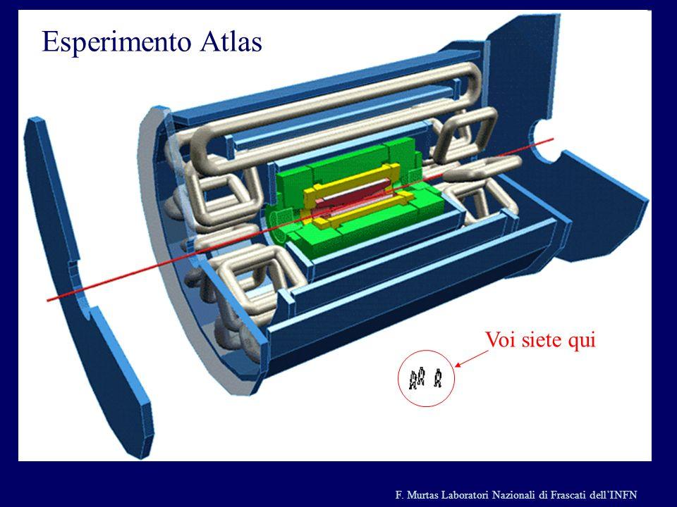 F. Murtas Laboratori Nazionali di Frascati dellINFN Esiste la particella di Higgs ? Questo eccesso di eventi ad alta energia ha fatto pensare ad un pr