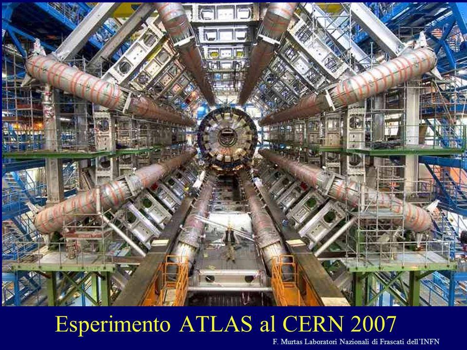 F. Murtas Laboratori Nazionali di Frascati dellINFN Esperimento ATLAS al CERN 2007