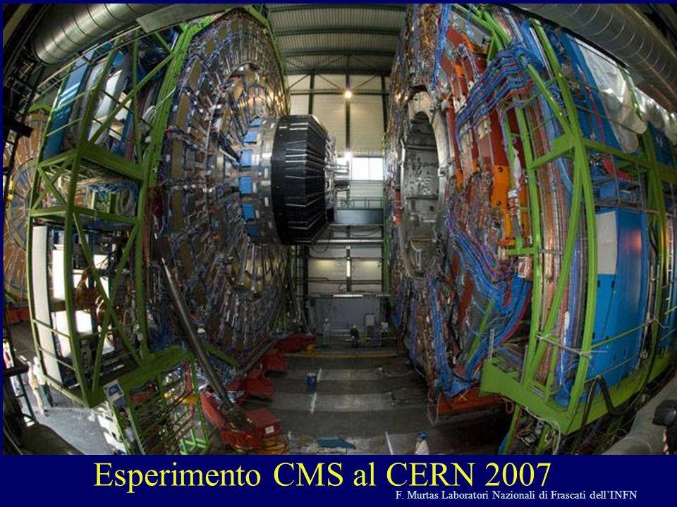 F. Murtas Laboratori Nazionali di Frascati dellINFN Esperimento CMS al CERN 2007