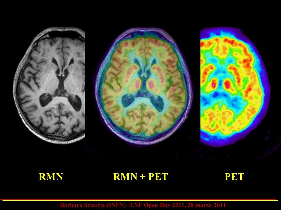 RMN + PETRMNPET - Barbara Sciascia (INFN) -LNF Open Day 2011, 28 marzo 2011