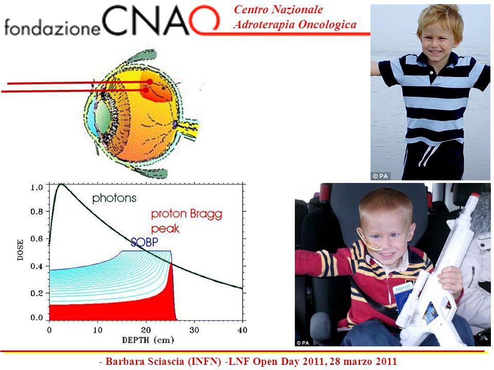 Centro Nazionale Adroterapia Oncologica - Barbara Sciascia (INFN) -LNF Open Day 2011, 28 marzo 2011