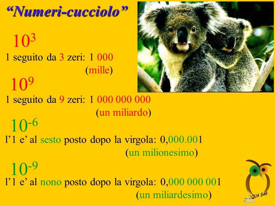 Numeri-cucciolo 10 3 10 -6 1 seguito da 3 zeri: 1 000 (mille) 10 9 1 seguito da 9 zeri: 1 000 000 000 (un miliardo) 10 -9 l1 e al sesto posto dopo la
