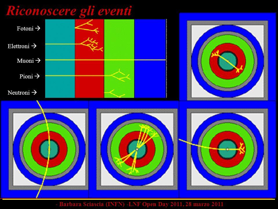 Fotoni Elettroni Muoni Pioni Neutroni Riconoscere gli eventi - Barbara Sciascia (INFN) -LNF Open Day 2011, 28 marzo 2011
