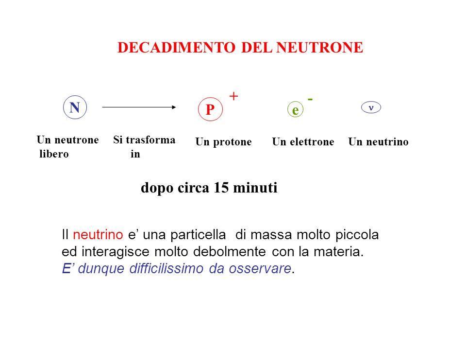 DECADIMENTO DEL NEUTRONE N P + e - Un neutrone libero Si trasforma in Un protone Un elettrone Un neutrino dopo circa 15 minuti Il neutrino e una parti