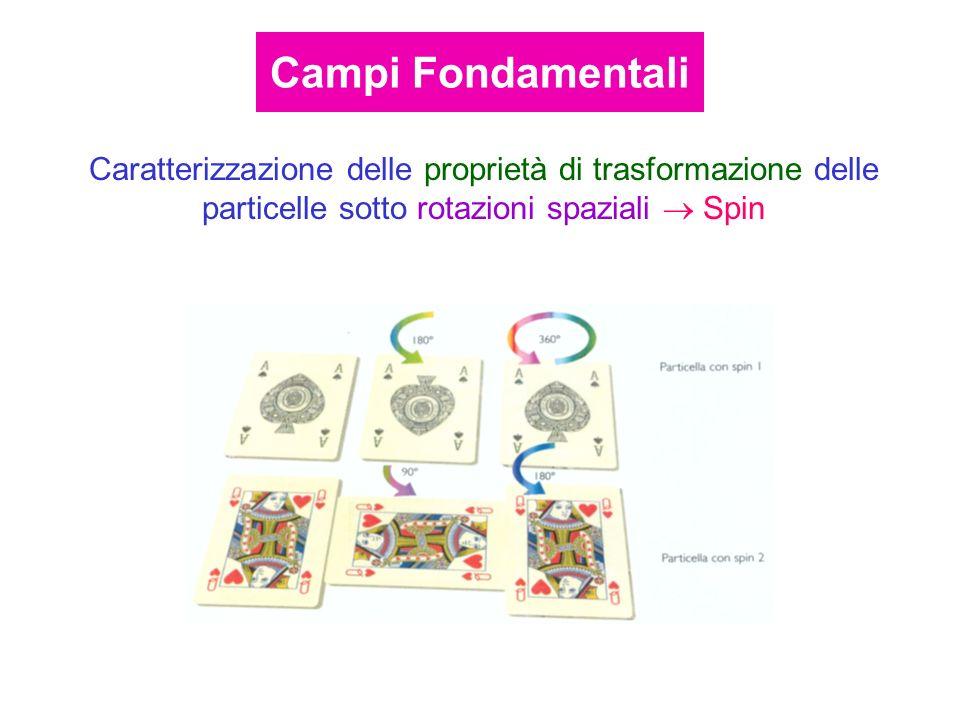 Caratterizzazione delle proprietà di trasformazione delle particelle sotto rotazioni spaziali Spin Campi Fondamentali