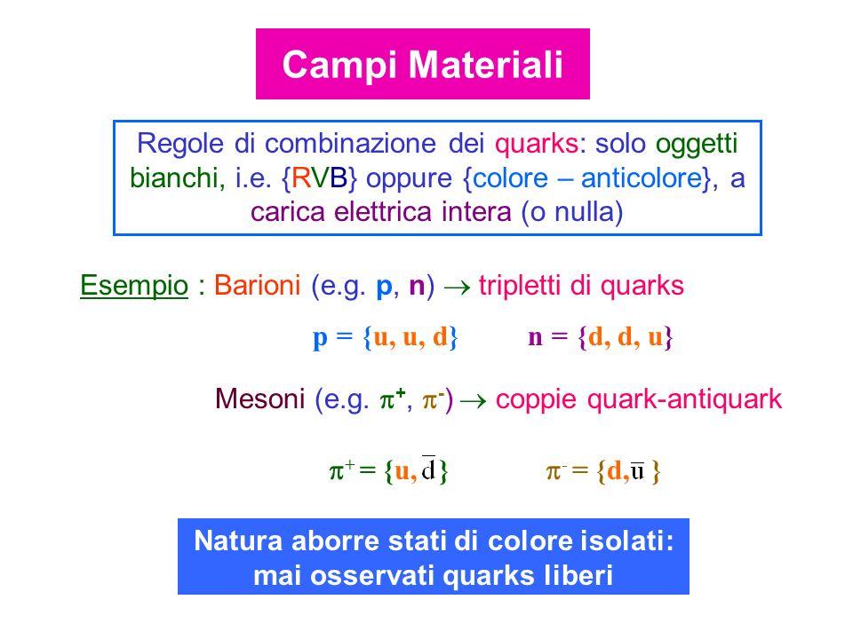Esempio : Barioni (e.g. p, n) tripletti di quarks p = {u, u, d} n = {d, d, u} Mesoni (e.g. +, - ) coppie quark-antiquark + = {u, } - = {d, } Regole di