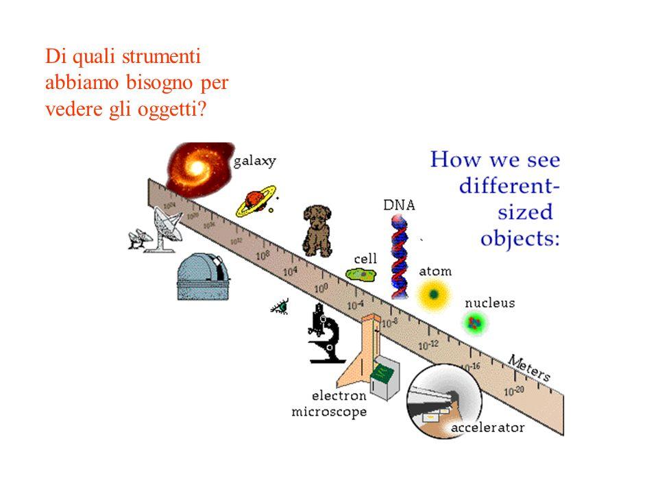 F.Riggi, Microcosmo e macrocosmo, Vacanze studio Gennaio 2002 Di quali strumenti abbiamo bisogno per vedere gli oggetti?