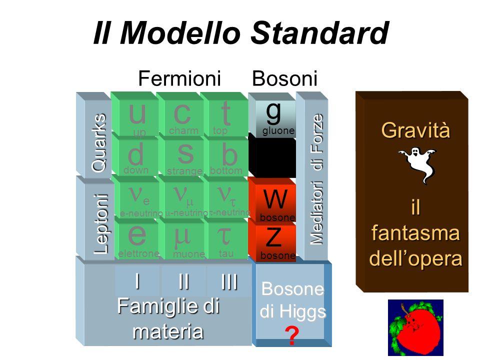 Bosone di Higgs Mediatori di Forze Z bosone W fotone g gluone Famiglie di materia Famiglie di materia tau -neutrino b bottom t top III muone -neutrino
