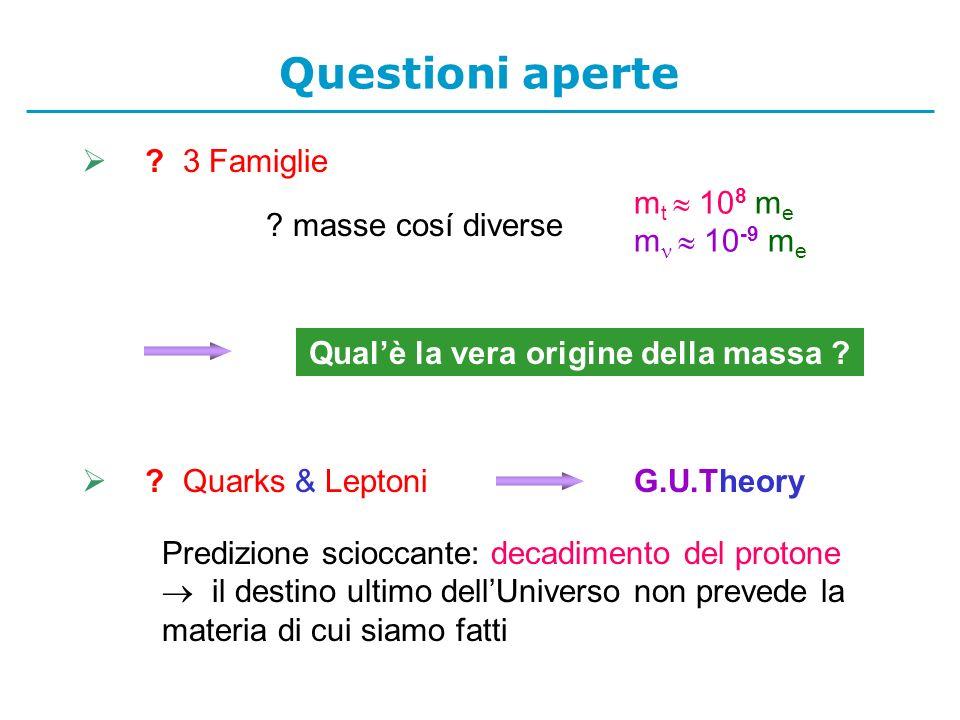 3 Famiglie m t 10 8 m e m 10 -9 m e .masse cosí diverse Qualè la vera origine della massa .