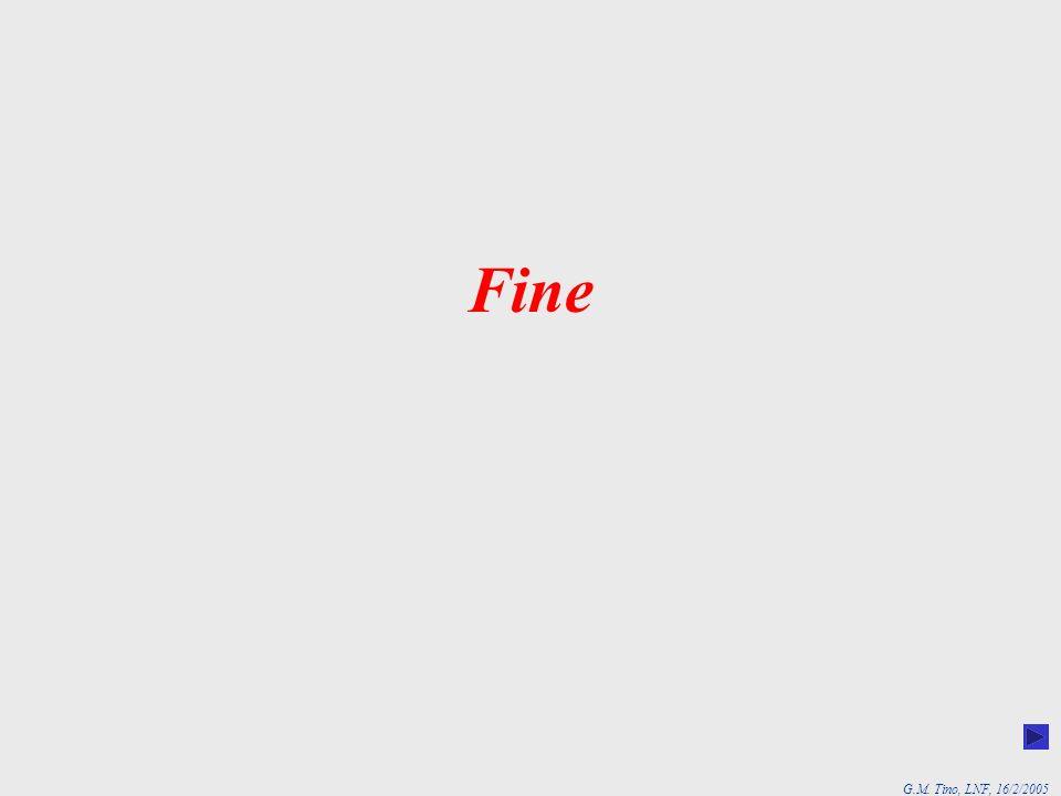 G.M. Tino, LNF, 16/2/2005 Fine