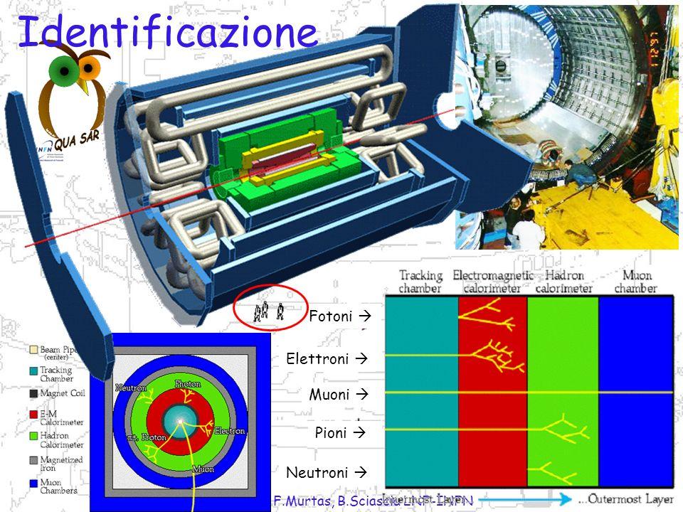 P.Gianotti, F.Murtas, B.Sciascia LNF-INFN A B C D B A C D Come vedere le particelle subatomiche