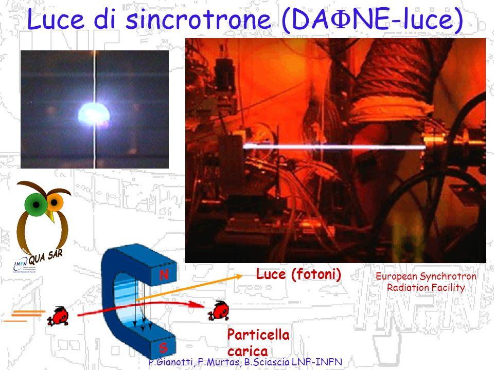 P.Gianotti, F.Murtas, B.Sciascia LNF-INFN si no Fotoni Elettroni Muoni Pioni Neutroni e + e - e + e - + - si Fotoni Elettroni Muoni Pioni Neutroni e +