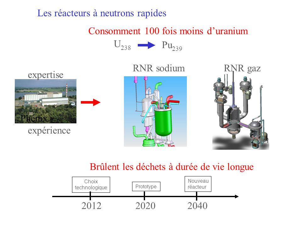 RADIOTOXICITÉ DES DÉCHETS ULTIMES Verres sans AM (PF seuls) Verres classiques (AM + PF) Combustible usé sans retraitement (Pu + AM + PF)