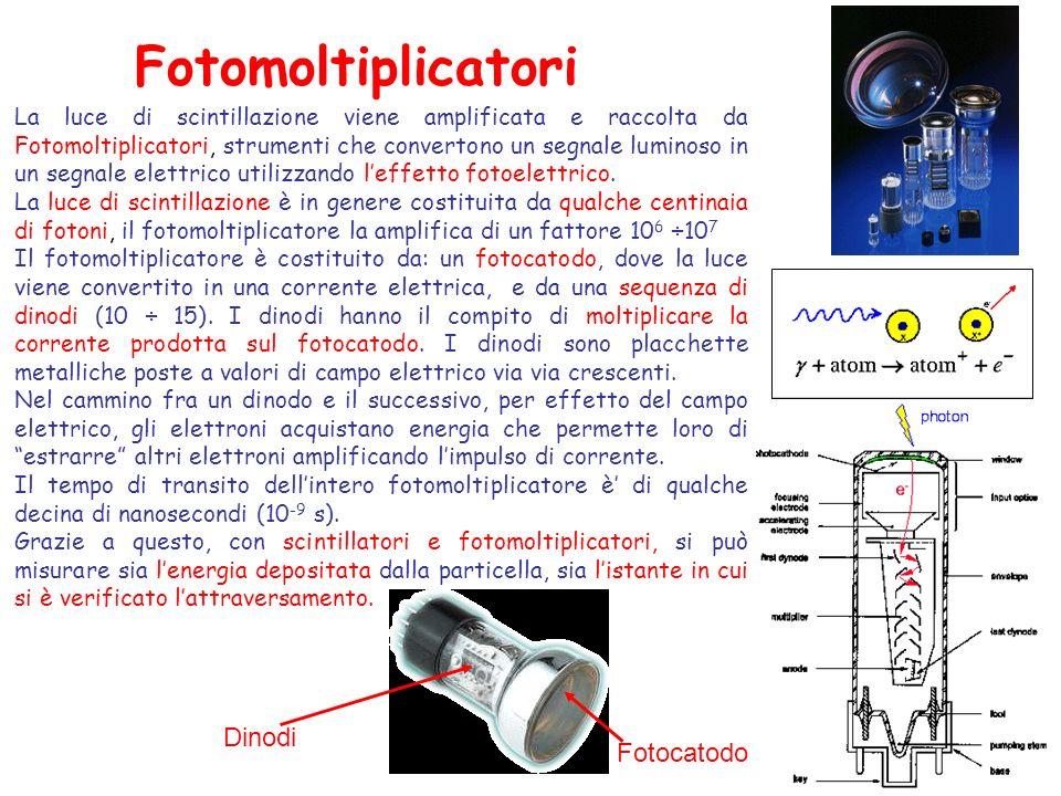 Fotomoltiplicatori Fotocatodo Dinodi La luce di scintillazione viene amplificata e raccolta da Fotomoltiplicatori, strumenti che convertono un segnale luminoso in un segnale elettrico utilizzando leffetto fotoelettrico.