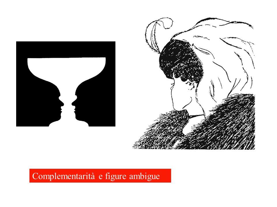 Complementarità e figure ambigue