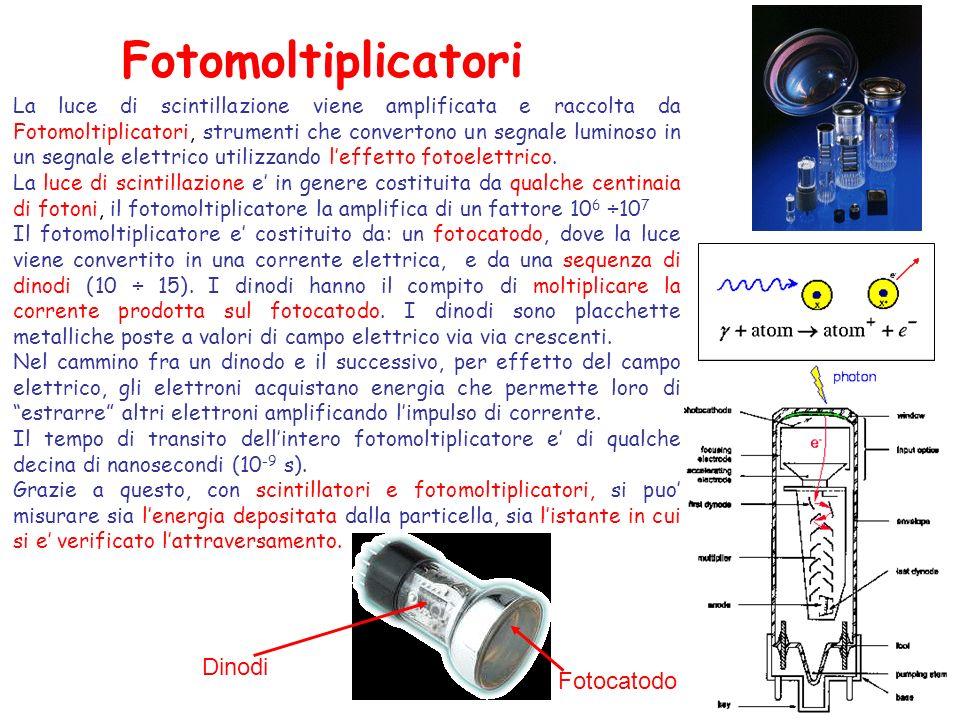 Fotomoltiplicatori La luce di scintillazione viene amplificata e raccolta da Fotomoltiplicatori, strumenti che convertono un segnale luminoso in un se