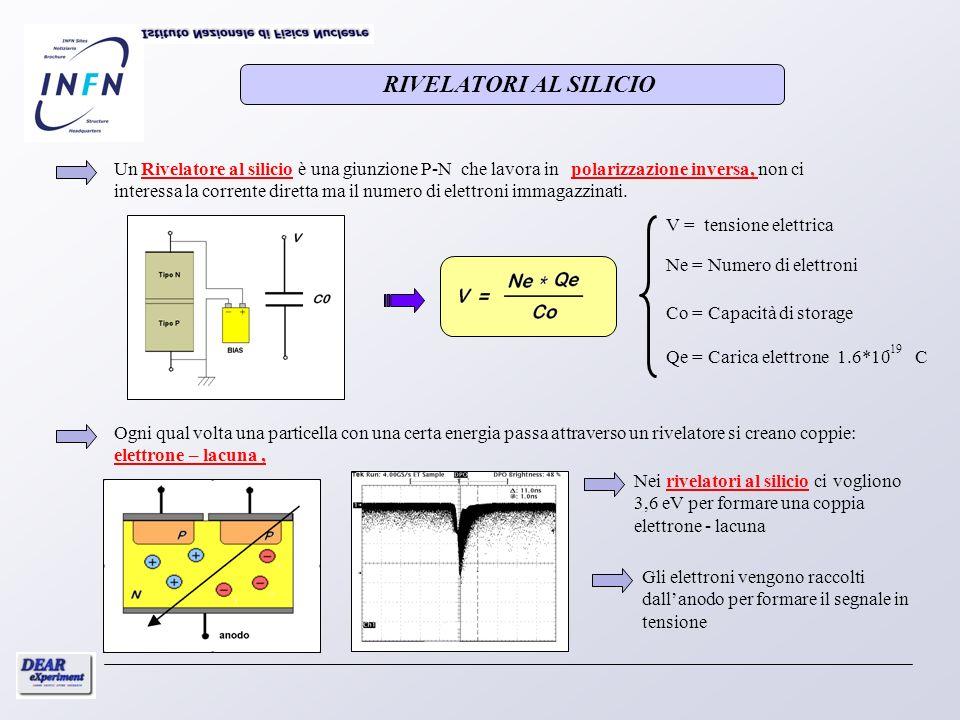 Un Rivelatore al silicio è una giunzione P-N che lavora in polarizzazione inversa, non ci interessa la corrente diretta ma il numero di elettroni imma