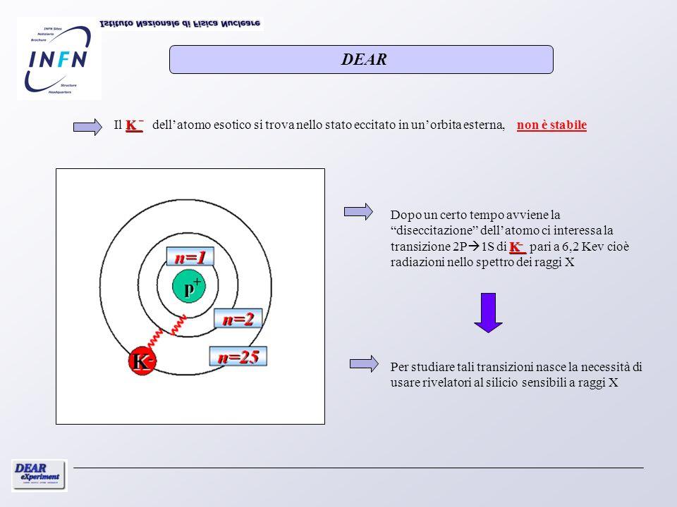 Per studiare tali transizioni nasce la necessità di usare rivelatori al silicio sensibili a raggi X K Il K dellatomo esotico si trova nello stato ecci