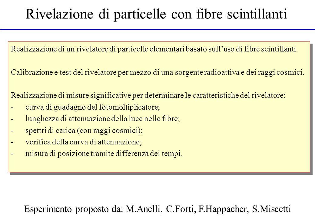 Rivelazione di particelle con fibre scintillanti Esperimento proposto da: M.Anelli, C.Forti, F.Happacher, S.Miscetti Realizzazione di un rivelatore di