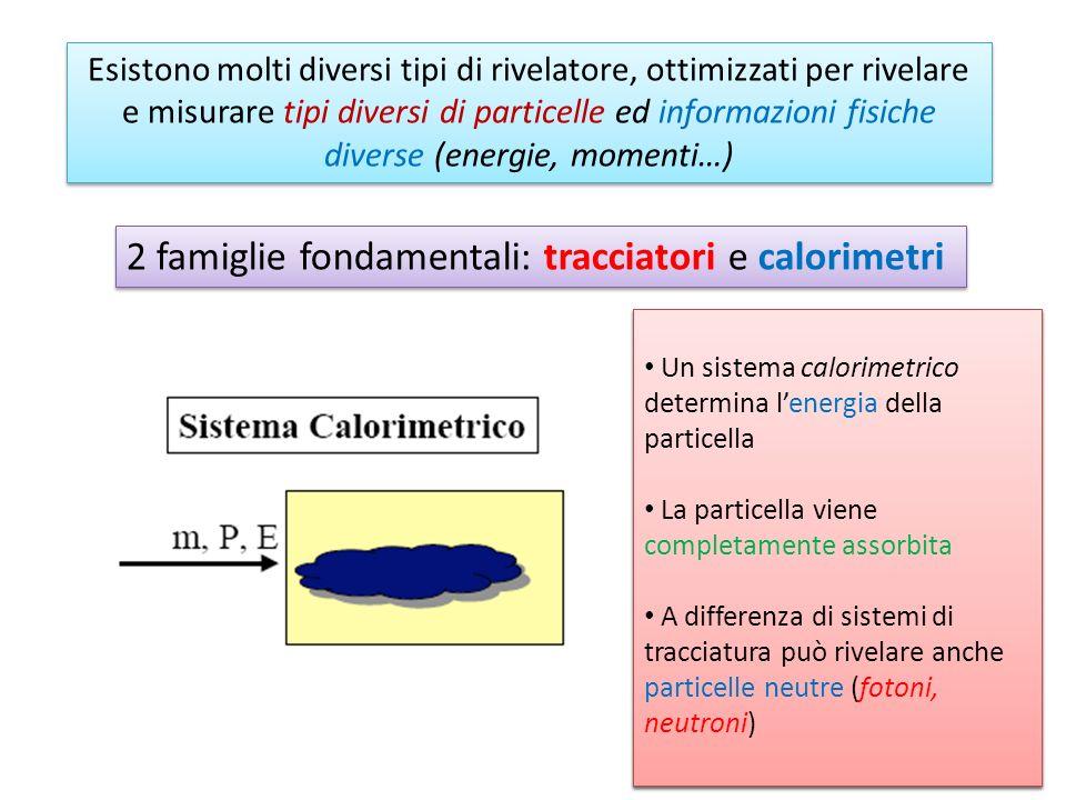 Esistono molti diversi tipi di rivelatore, ottimizzati per rivelare e misurare tipi diversi di particelle ed informazioni fisiche diverse (energie, mo