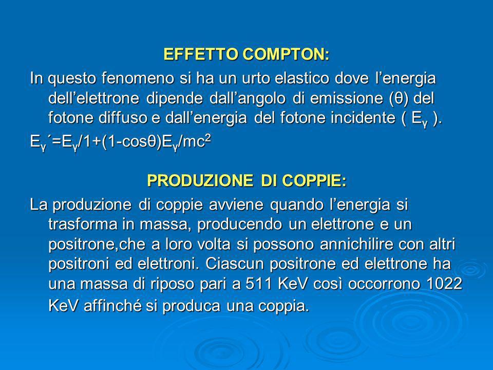 IL RIVELATORE Il rivelatore è un trasduttore e comprende lo scintillatore ed il fotomoltiplicatore.