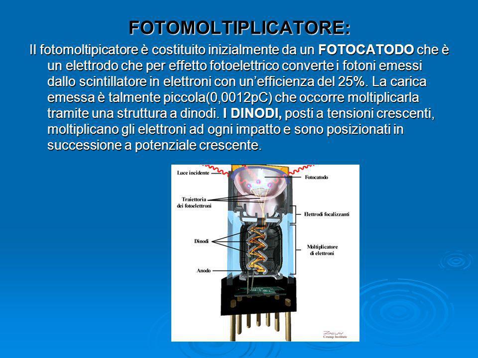 AMPLIFICATORE: Serve per amplificare il segnale proveniente dal fotomoltplicatore.