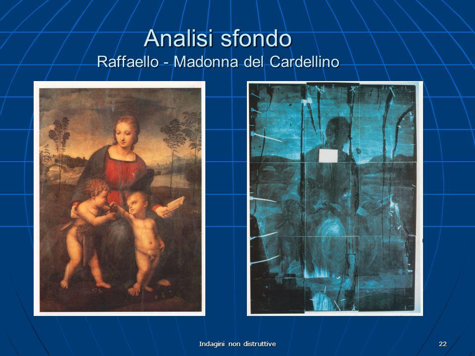 Indagini non distruttive22 Analisi sfondo Raffaello - Madonna del Cardellino