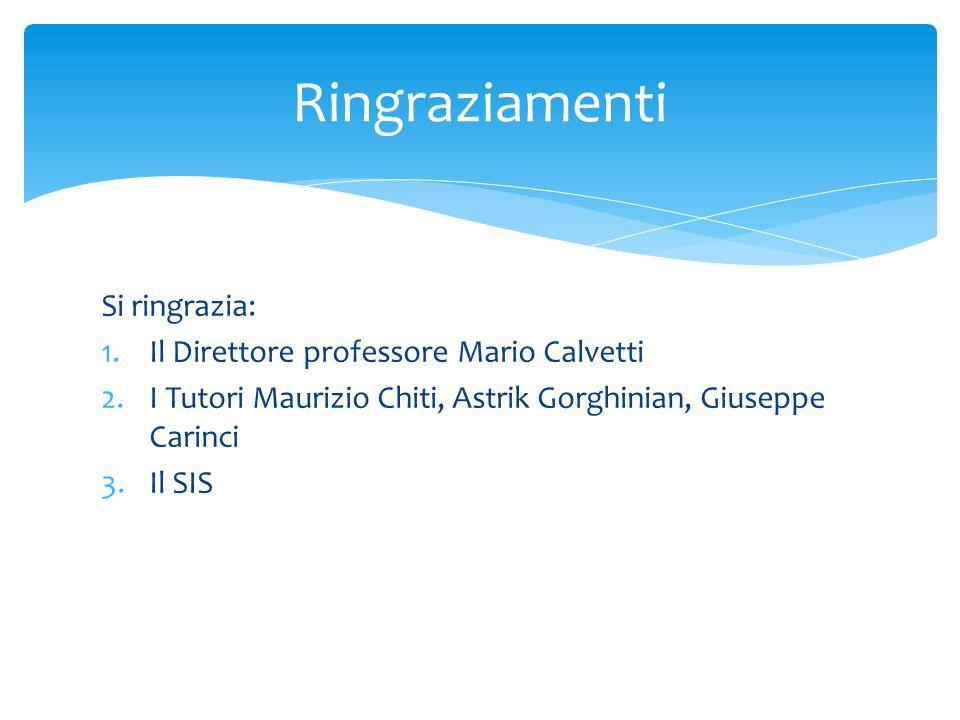 Si ringrazia: 1.Il Direttore professore Mario Calvetti 2.I Tutori Maurizio Chiti, Astrik Gorghinian, Giuseppe Carinci 3.Il SIS Ringraziamenti