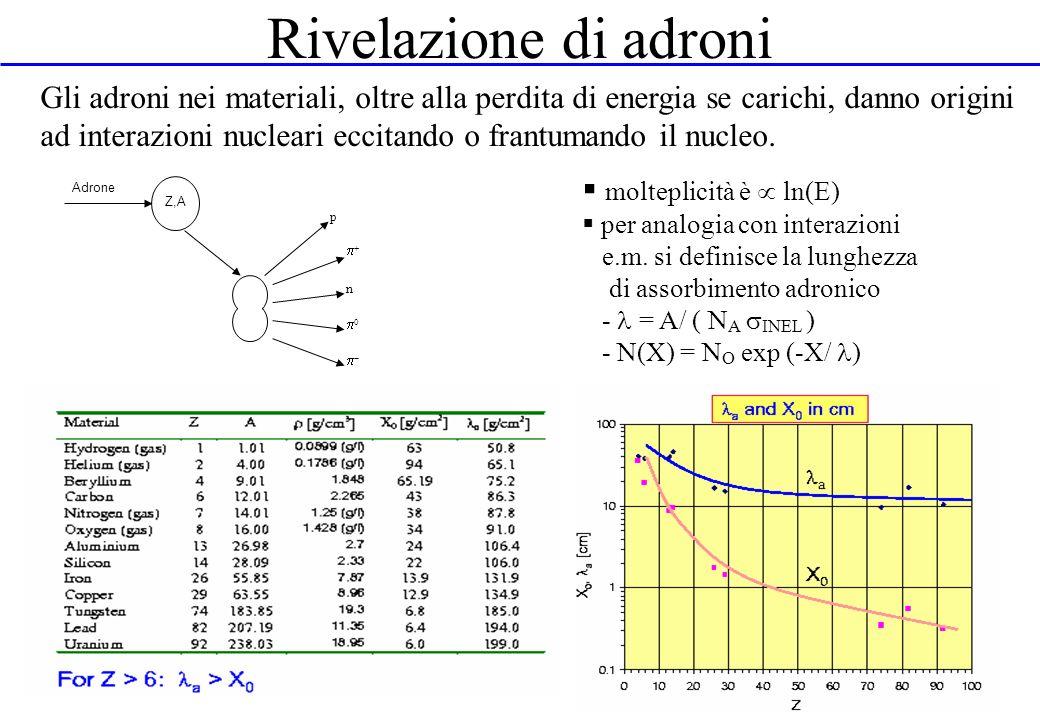 Rivelazione di adroni Z,A Adrone n p Gli adroni nei materiali, oltre alla perdita di energia se carichi, danno origini ad interazioni nucleari eccitan