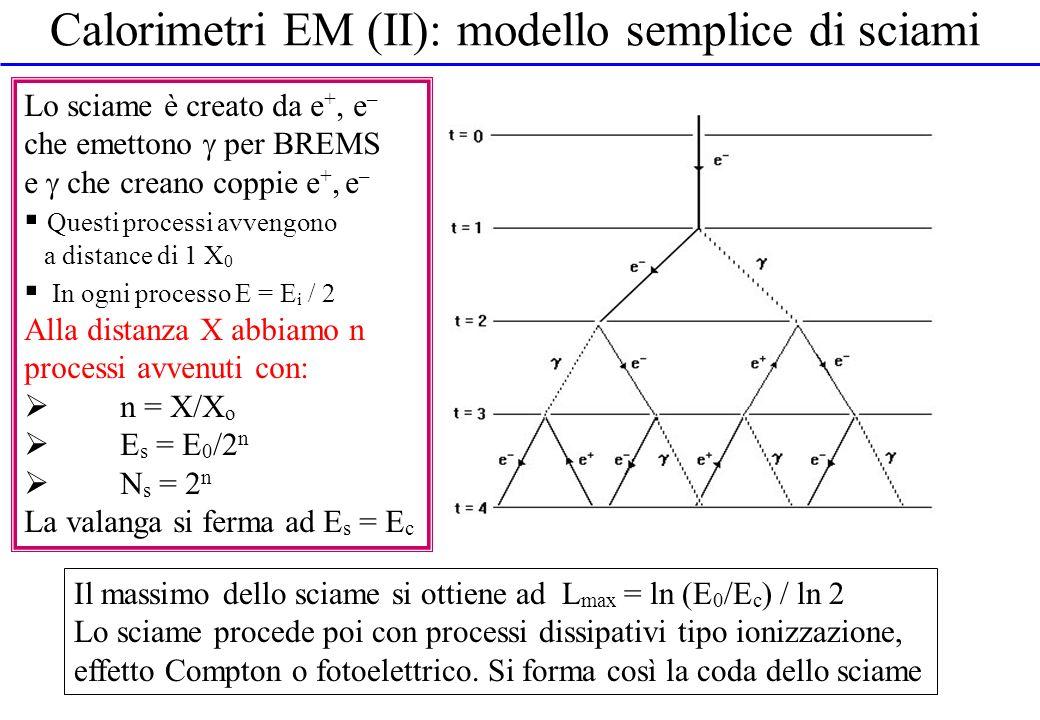 Calorimetri EM (II): modello semplice di sciami Lo sciame è creato da e +, e – che emettono per BREMS e che creano coppie e +, e – Questi processi avv