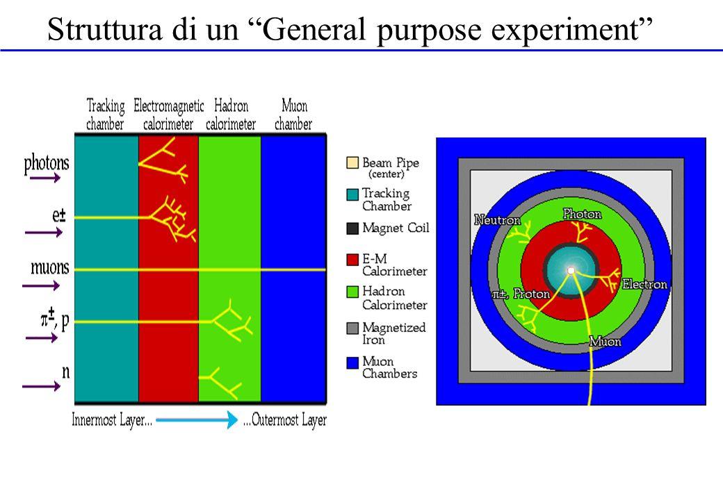 Struttura di un General purpose experiment