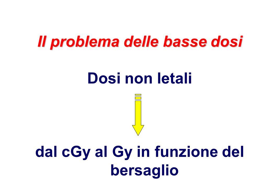 Il problema delle basse dosi Dosi non letali dal cGy al Gy in funzione del bersaglio