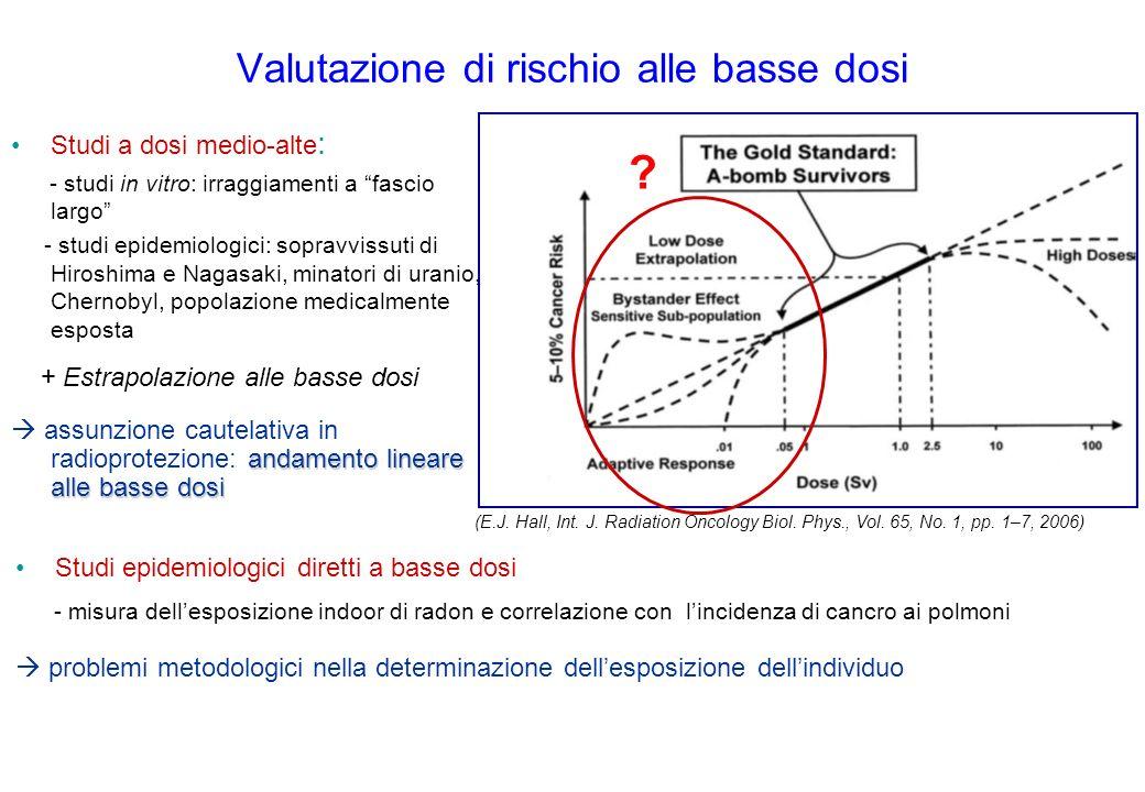 Valutazione di rischio alle basse dosi Studi a dosi medio-alte : - studi in vitro: irraggiamenti a fascio largo - studi epidemiologici: sopravvissuti