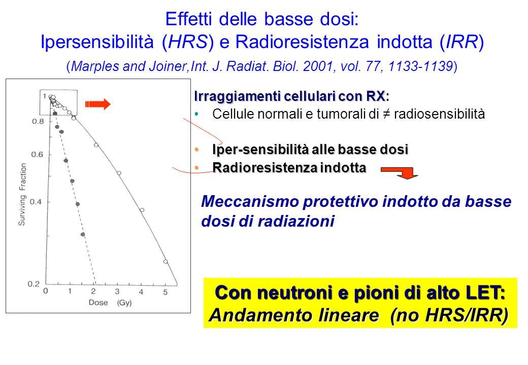 Effetti delle basse dosi: Ipersensibilità (HRS) e Radioresistenza indotta (IRR) (Marples and Joiner,Int.