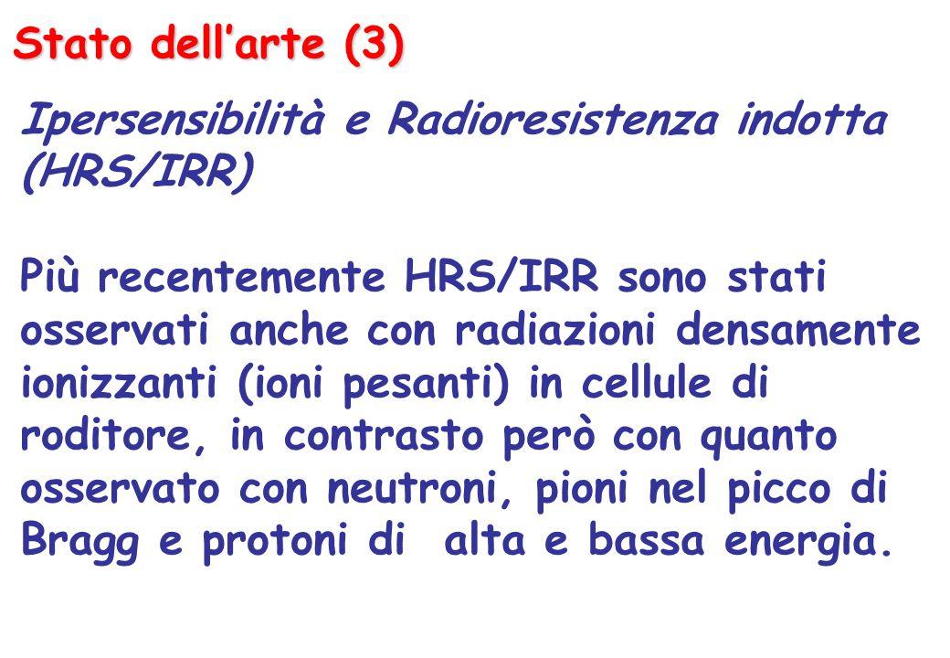Stato dellarte (3) Ipersensibilità e Radioresistenza indotta (HRS/IRR) Più recentemente HRS/IRR sono stati osservati anche con radiazioni densamente ionizzanti (ioni pesanti) in cellule di roditore, in contrasto però con quanto osservato con neutroni, pioni nel picco di Bragg e protoni di alta e bassa energia.