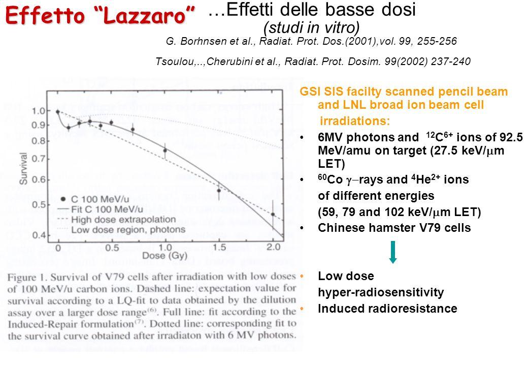 …Effetti delle basse dosi (studi in vitro) G. Borhnsen et al., Radiat. Prot. Dos.(2001),vol. 99, 255-256 Tsoulou,..,Cherubini et al., Radiat. Prot. Do
