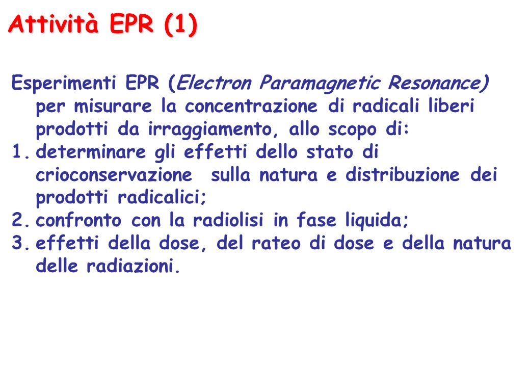 Attività EPR (1) Esperimenti EPR (Electron Paramagnetic Resonance) per misurare la concentrazione di radicali liberi prodotti da irraggiamento, allo scopo di: 1.determinare gli effetti dello stato di crioconservazione sulla natura e distribuzione dei prodotti radicalici; 2.confronto con la radiolisi in fase liquida; 3.effetti della dose, del rateo di dose e della natura delle radiazioni.