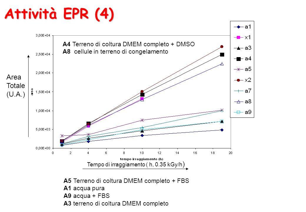Attività EPR (4) Area Totale (U.A.) Tempo di irraggiamento ( h, 0.35 kGy/h ) A4 Terreno di coltura DMEM completo + DMSO A8 cellule in terreno di conge