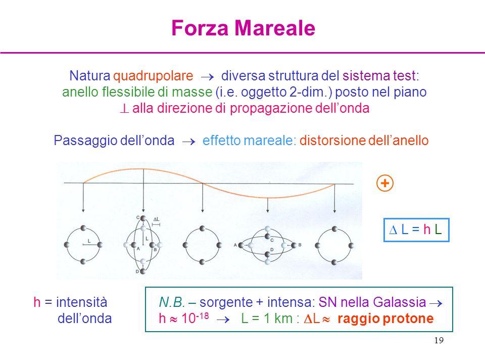 19 Natura quadrupolare diversa struttura del sistema test: anello flessibile di masse (i.e. oggetto 2-dim.) posto nel piano alla direzione di propagaz