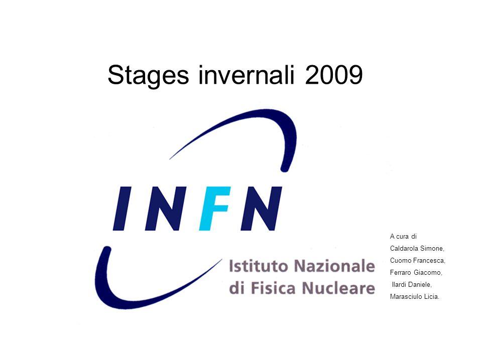 Stages invernali 2009 A cura di Caldarola Simone, Cuomo Francesca, Ferraro Giacomo, Ilardi Daniele, Marasciulo Licia.