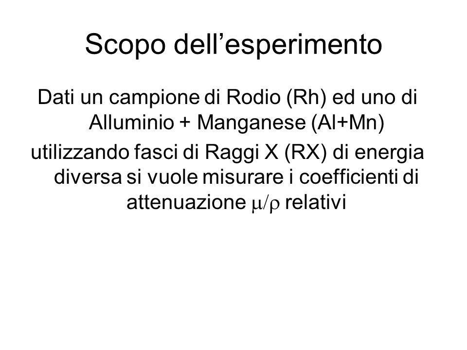 Scopo dellesperimento Dati un campione di Rodio (Rh) ed uno di Alluminio + Manganese (Al+Mn) utilizzando fasci di Raggi X (RX) di energia diversa si v