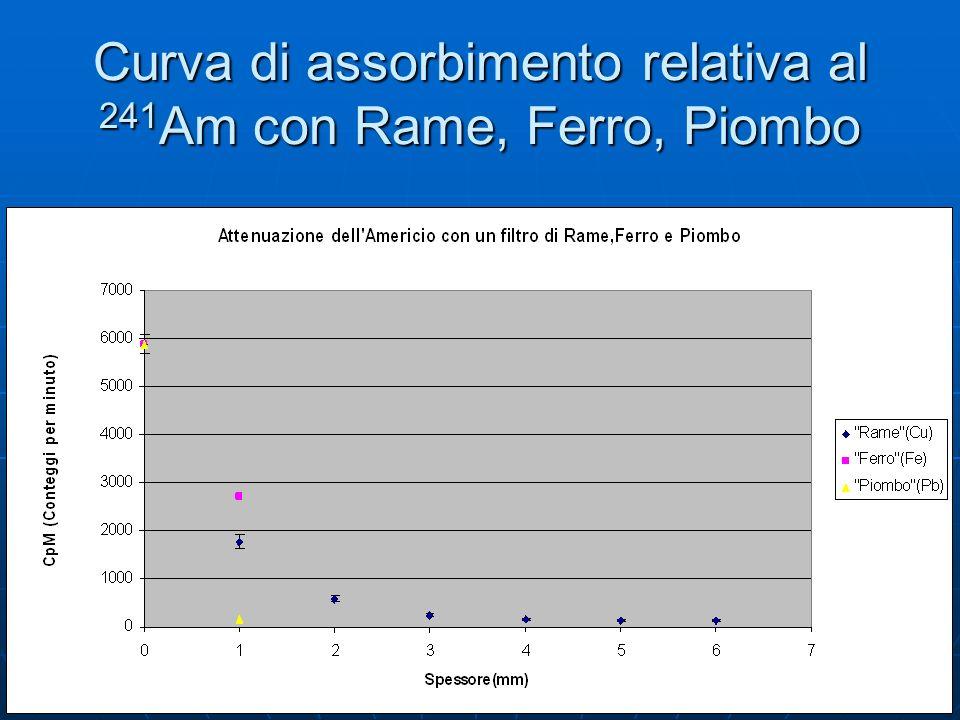 Curva di assorbimento relativa al 241 Am con Rame, Ferro, Piombo