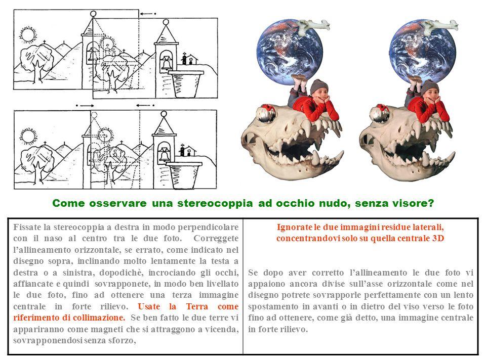 Fissate la stereocoppia a destra in modo perpendicolare con il naso al centro tra le due foto. Correggete lallineamento orizzontale, se errato, come i