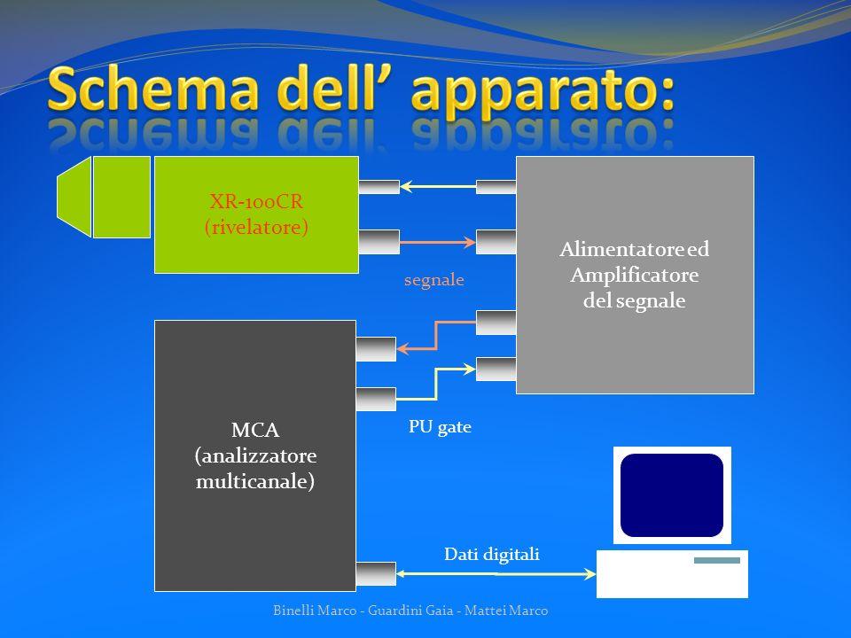 Binelli Marco - Guardini Gaia - Mattei Marco I campioni analizzati sono: Campione puro di Rodio; Campione lega di Alluminio e Manganese.