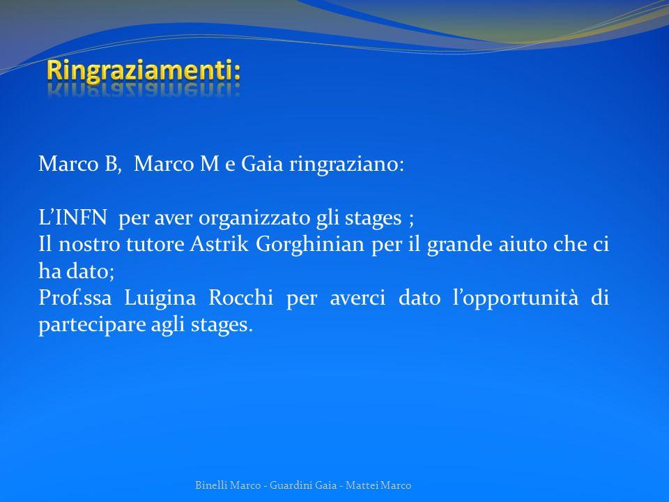 Binelli Marco - Guardini Gaia - Mattei Marco Marco B, Marco M e Gaia ringraziano: LINFN per aver organizzato gli stages ; Il nostro tutore Astrik Gorg
